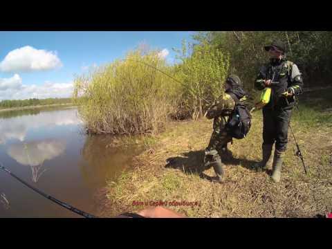 ловим хищника по весне видео