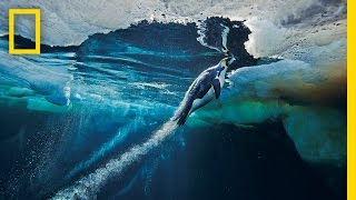 Emperor Penguins Speed Launch Out of the Water | National Geographic