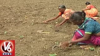 Farmers In Concern With Lack Of Rains In Medak District | V6 News