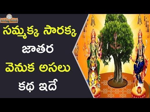 సమ్మక్క సారక్క జాతర వెనుక అసలు కథ ఇదే || Real Story Of Sammakka Sarakka