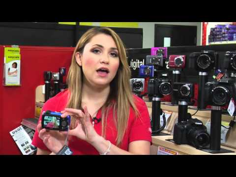 Which Digital Camera is Right for You: Point & Shoot vs DSLR