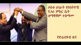 DireTube News - Egypt, Sudan and Ethiopia agree to form supreme trilateral council