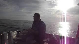 How to catch squid. Moreton Bay