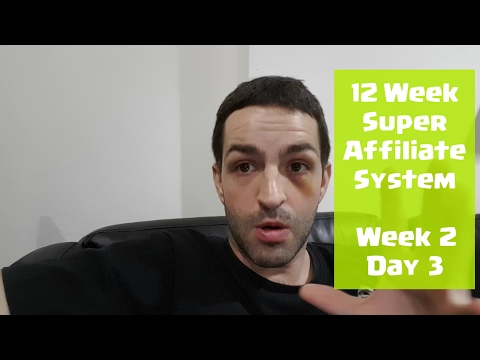 John Crestani 12 Week Super Affiliate System - Week 2, Day 3