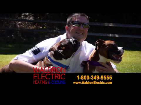Waldron Electric PawsitivelyLoved