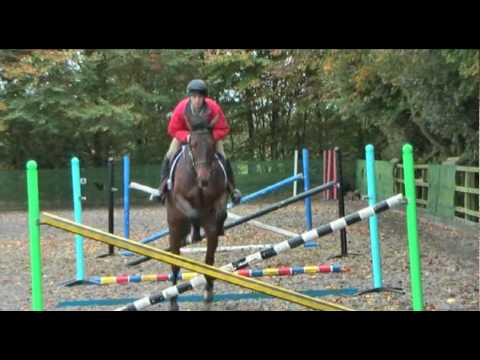 Bounces to improve your jumping, with eventer Harry Meade (TRAILER)