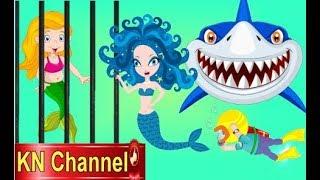 Hoạt hình KN Channel TIÊN CÁ BỊ BẮT CÓC