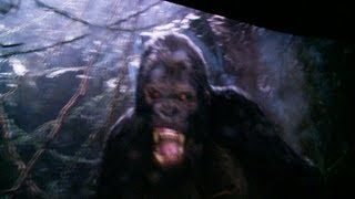King Kong 360 3D Universal Studios Full Ride (HD POV)