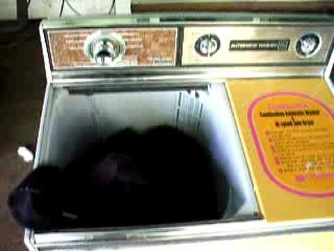Toshiba Twin-Tub Automatic Washer & Spin-Dryer #1
