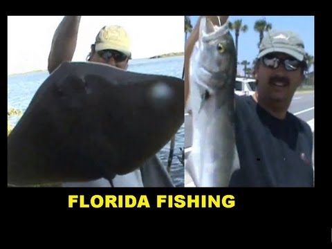 FISHING Dunlawton ,port orange fla, Big STINGRAYS & Bluefish