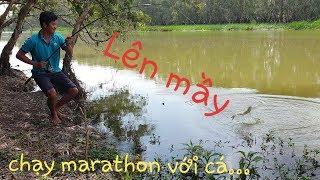 Câu cá Tràm Chim P2: Chạy đua với cá, gì đâu mà ben cần liên tục chạy không kịp nghỉ đuối luôn