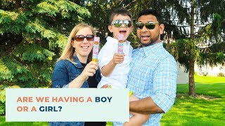 Are we having a Boy or a Girl? Gender Reveal
