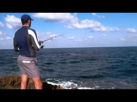 Israel Sport Fishing - Spinning for baby amberjacks - Using jigs - Shore Jigging