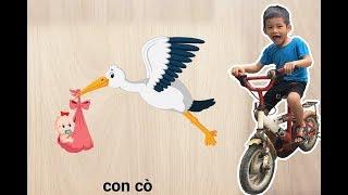 Bé Bo Chơi Trò Chơi Ghép Hình Con Cò - Animal Names Puzzle Stork  - BVA TV