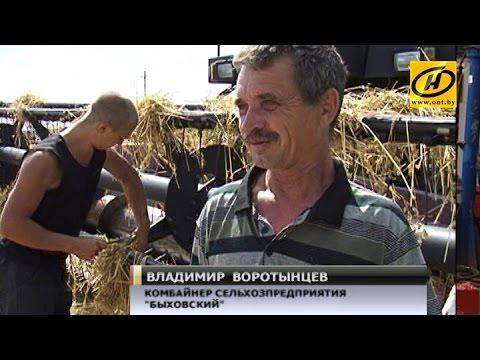Урожай-2014: аграрии убрали почти 2 миллиона тонн зерна