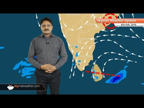 Weather Forecast for February 08: Western Disturbance moves ahead and rain belt moves eastwards