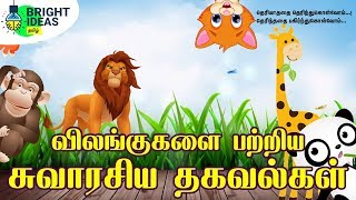 Facts About Animals in Tamil Animals Facts Most interesting Facts of Animals