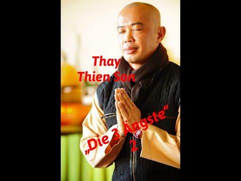 Die 3 Ängste nach Thay Thien Son 2: Buddhistische Psychologie