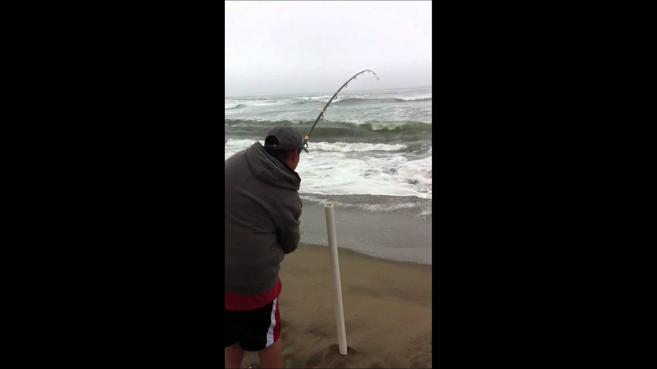 San francisco surf fishing striped bass youtube for Surf fishing for stripers