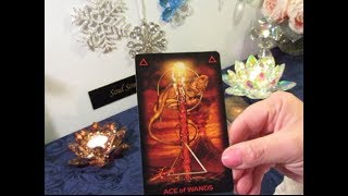 ~The Daily Vibe~Instant Connection, On Fire, Undeniable Attraction~01/18 Daily Tarot Reading