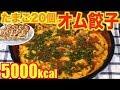 【MUKBANG】 Giant Dumpling Omelette Using Frozen Dumplings And 20 Eggs!! 5000kcal [CC Available]