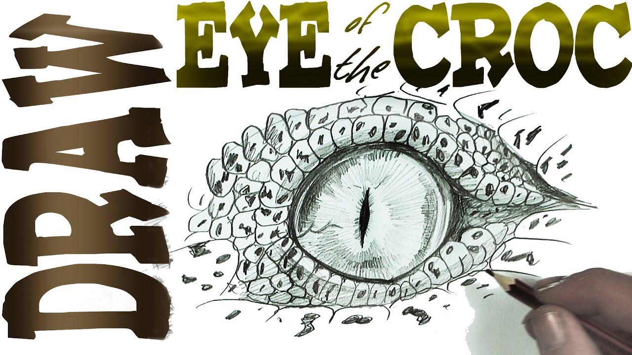 Crocodile Eye Stock Illustrations Images amp Vectors