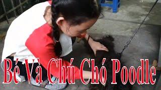 """Baby Play with Uncle """"Poodle Dog"""" - Bé Vui Chơi Cùng Chú Chó Poodle"""