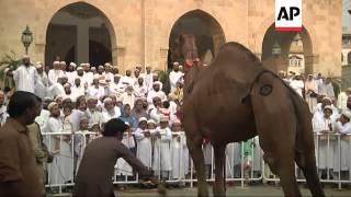 Download Mass prayers and celebrations kick off  Muslim holiday of Eid 3Gp Mp4