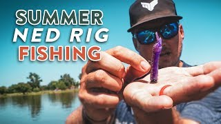 Summer Ned Rig Fishing | KEYS To Catch More Fish In The HEAT