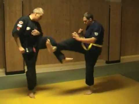 Kempo Jitsu Basics