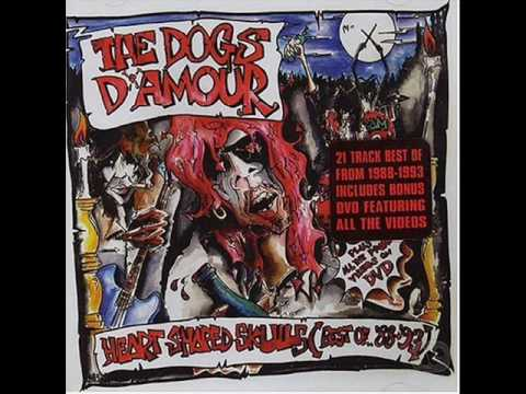 The Dogs Damour - Angel