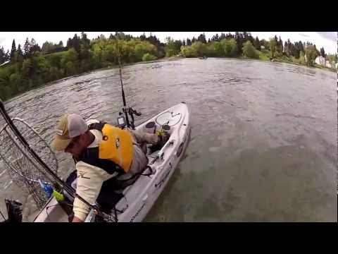 Kayak Fisherman hit by Boat