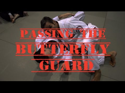 Passing the Butterfly Guard with Professor Pedro Sauer
