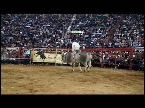 20 Toros Destructores para 20 jinetes seleccionados de Mexico en la Monumental de Morelia