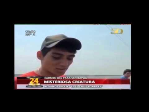 MISTERIOS: CHUPACABRA ENCONTRADO EN PARAGUAY. NOTICIA DE ULTIMO MOMENTO