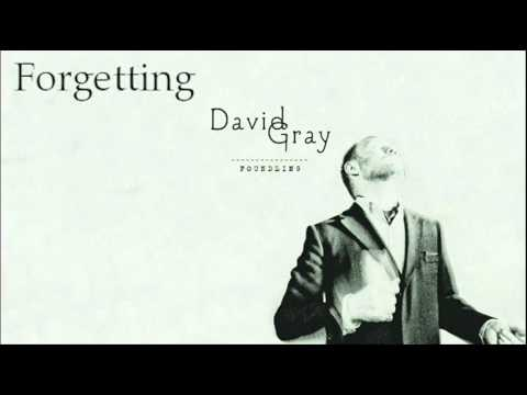 Gray, David - Forgetting