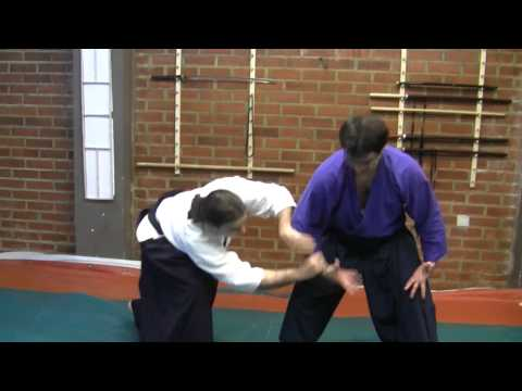 Ogawa Ryu International Representatives Training - Aikijujutsu Image 1