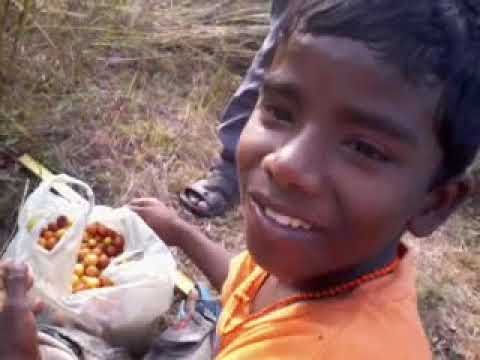 Odia People video