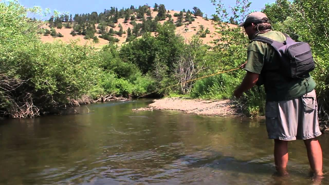 Creek fly fishing missouri river headwaters sw montana for Trout fishing in missouri
