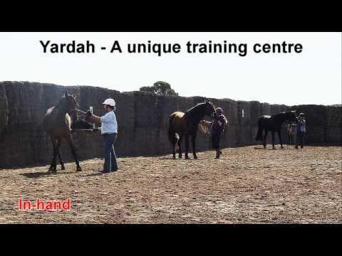 Yardah - Come Visit Us