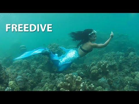 MLDSPOT TV - Komunitas Freedive, Olahraga Sambil Mengeksplorasi Keindahan Laut Indonesia