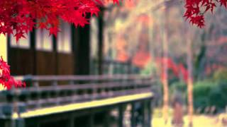 SARAI - Kayama Yuzo & ShinjiTanimura  -  サライ -  加山雄三 &  谷村新司