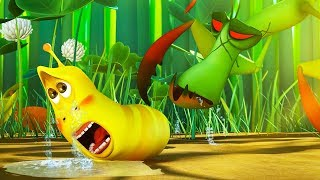 LARVA - BABY LARVA DANGER | Cartoon Movie | Cartoons For Children | Larva Cartoon | LARVA Official