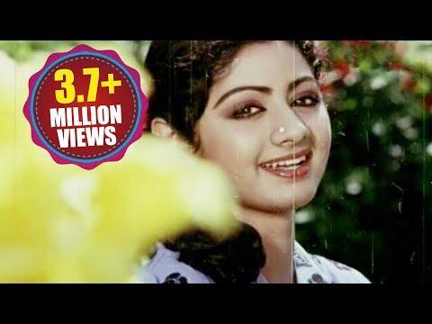 Premabhishekam  Songs - Naa Kallu Chebuthunnayi - Anr Sridevi Jayasudha video