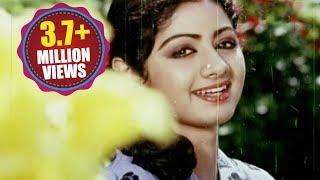 Premabhishekam  Songs - Naa Kallu Chebuthunnayi - ANR Sridevi Jayasudha