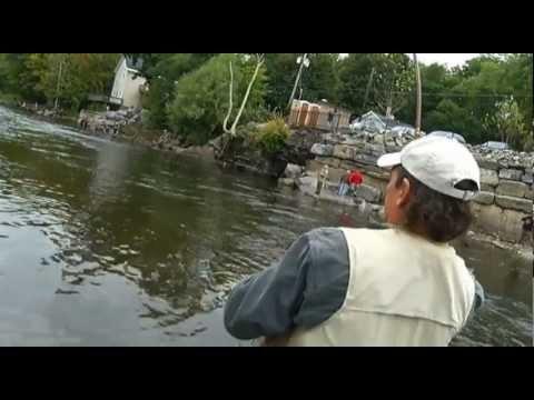 Salmon fishing in pulaski ny youtube for Pulaski ny fishing report