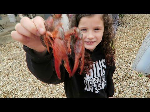 Louisiana Crawfish Boil (WK 272.4) | Bratayley