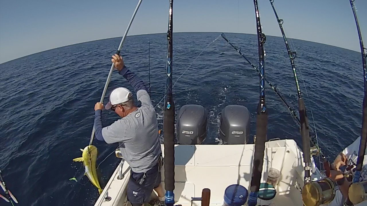Tuna fishing in new jersey fishing fever for Fishing in nj