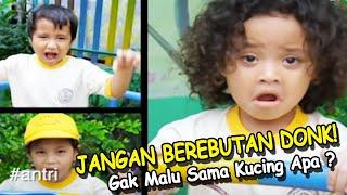 download lagu Jangan Berebutan Donk Gak Malu Sama Kucing Apa ? gratis