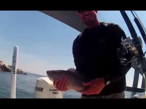 Snapper Fishing at The Skyway Bridge